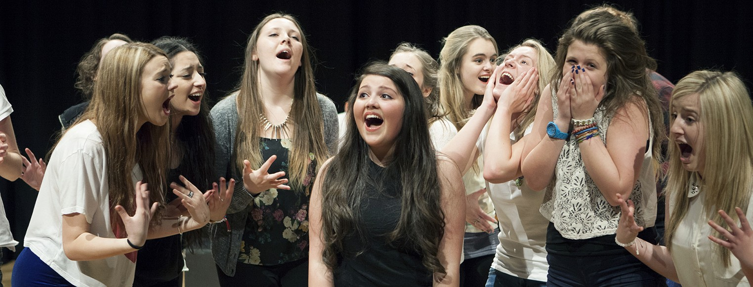 Musical Theatre (for ages 12–14) Image