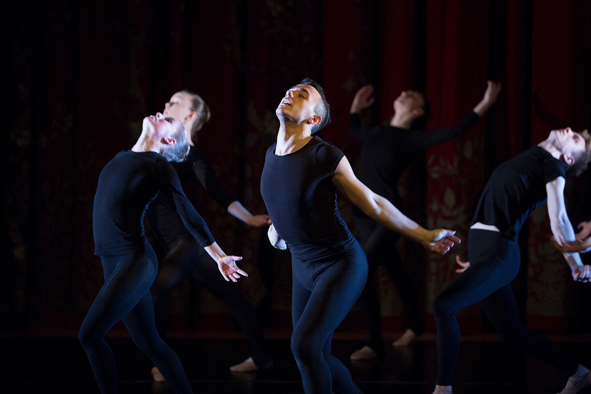 Contemporary Dance for Adults Image