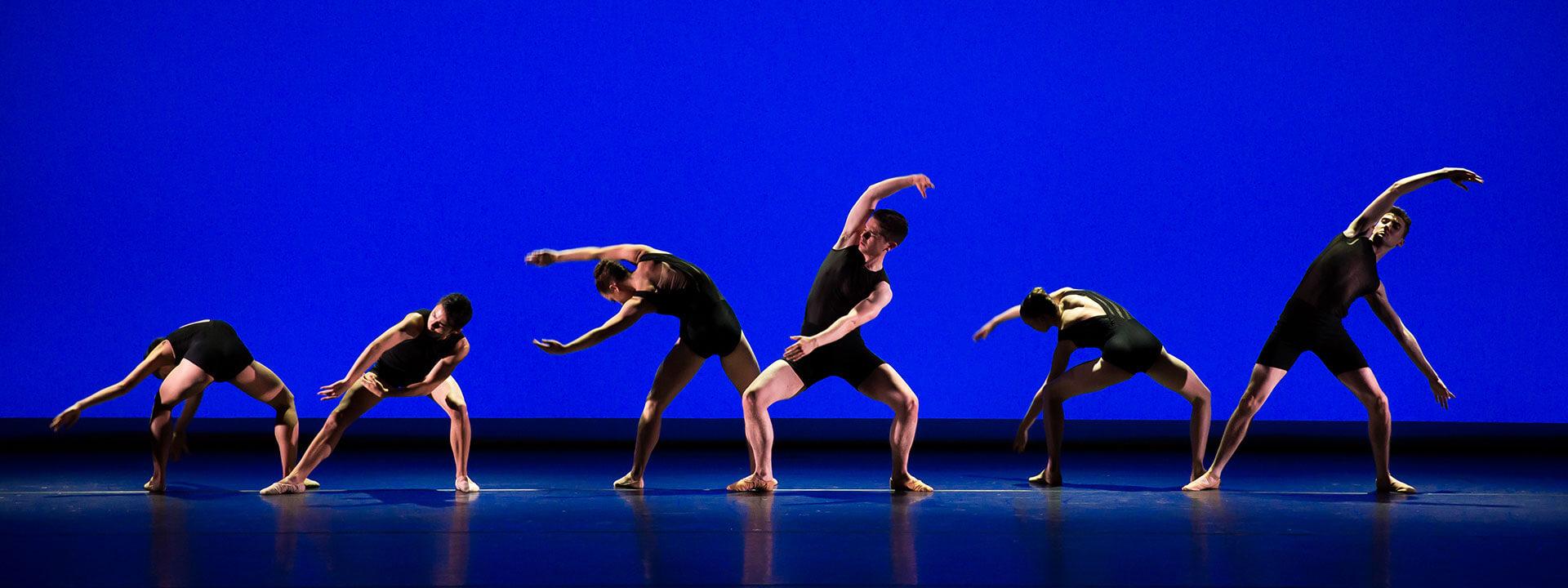 Vocational Dance Training Online Summer School (16+) Image